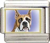 Italian Boxer Dog Charm