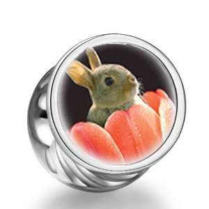 Pandora Bunny In Tulip Photo Love Charm