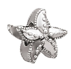 Pandora One Sided Ocean Starfish Charm